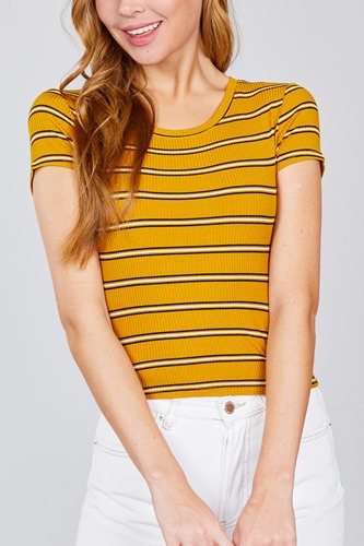 Short sleeve round neck multi stripe rib knit top-id.cc38952a