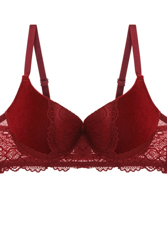 Push up velvet and lace bra-id.cc51722a