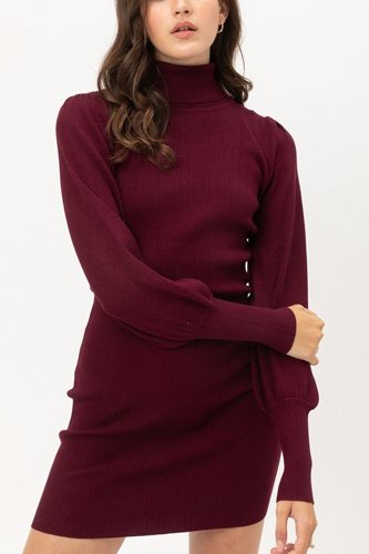 Turtle neck sweater dress-id.cc52925b