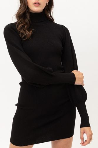 Turtle neck sweater dress-id.cc52925c